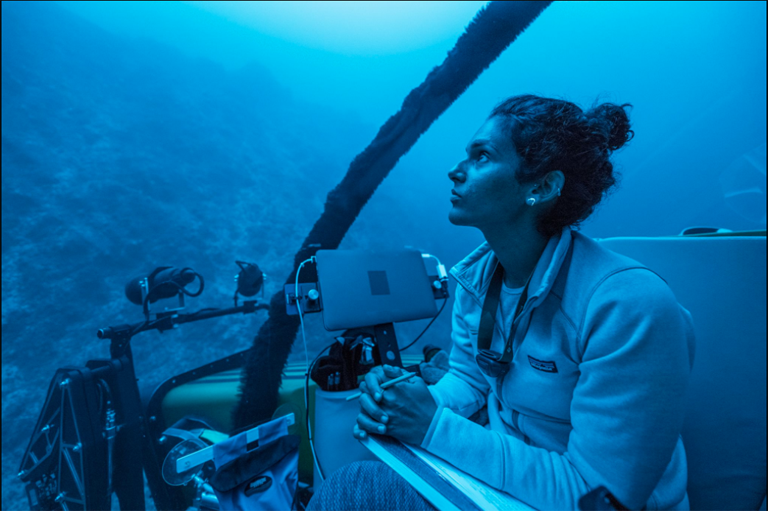 Audio: Exploring the deep sea with biologist Diva Amon