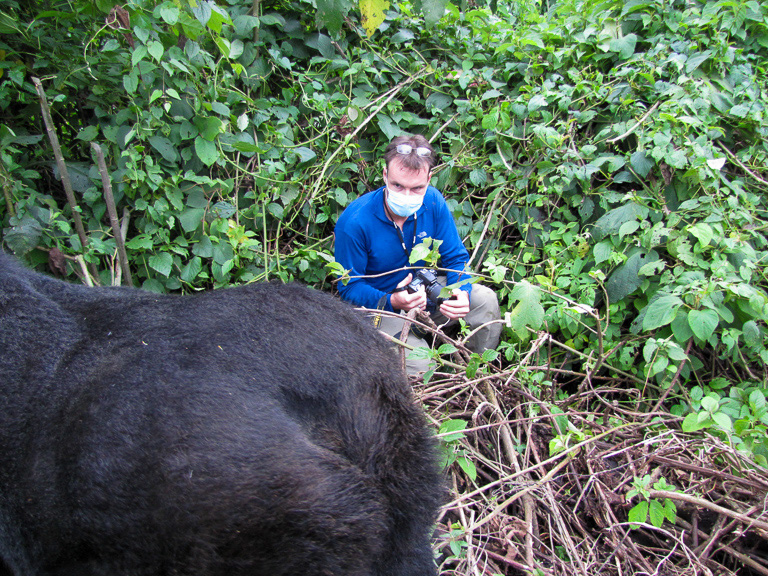 The author with the mountain gorillas in 2014. Image by Katherine Price.