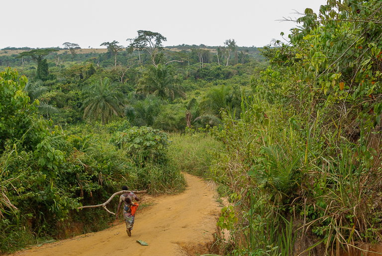 Healthy forests provide many resources to vulnerable communities around the world. Image by John C. Cannon/Mongabay.