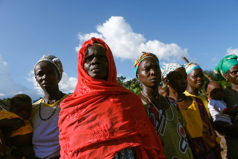 The women of Ga-gurdo work to help protect and preserve the community forest in their town. Image by Ricci Shryock.