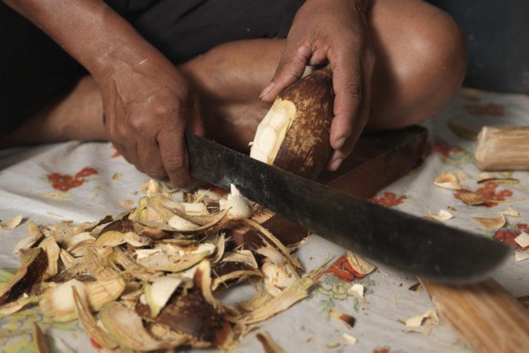 Brazil's 'coconut breakers' feel the squeeze of Cerrado development