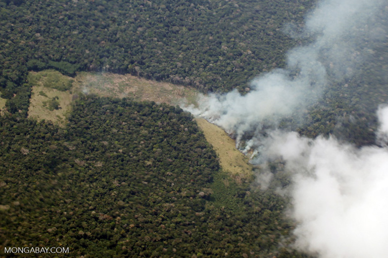 A fire in the Peruvian Amazon. Image by Rhett A. Butler/Mongabay.