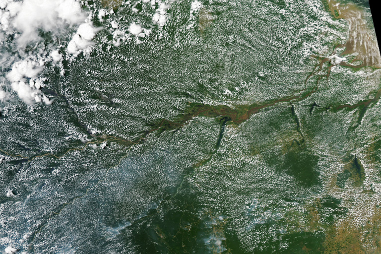 Cloud formations over the Amazon. Image by Lauren Dauphin/NASA Earth Observatory using MODIS data from NASA.