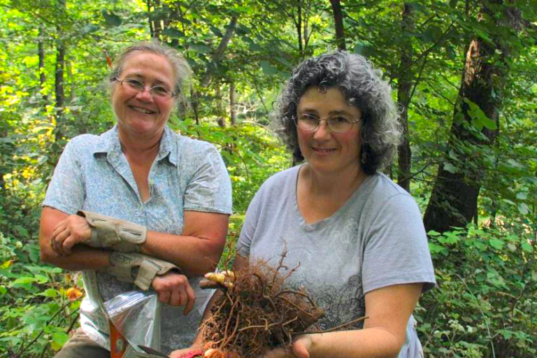 Agroforestry program in Appalachia receives $590 000 in federal funding