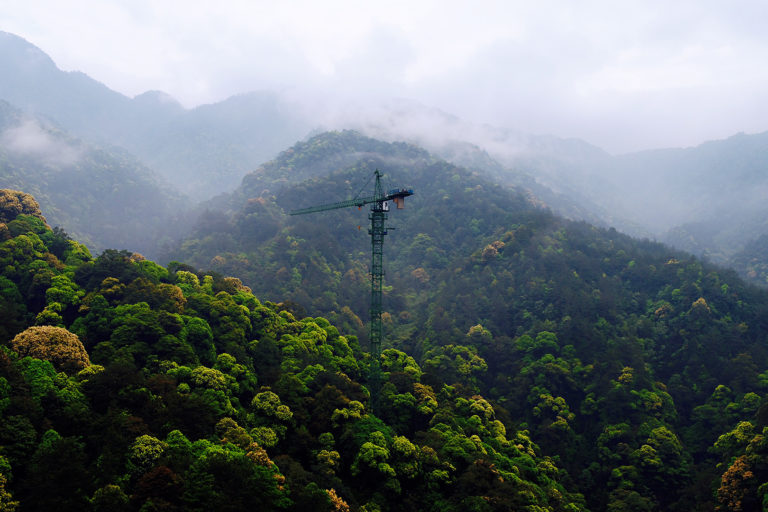 A canopy crane in the forest in Gutianshan National Nature Reserve. Photo courtesy of Lei Chen.