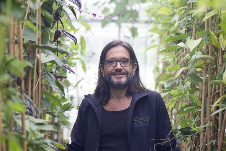 Bringing back extinct plants to life: Q&A with 'plant messiah' Carlos