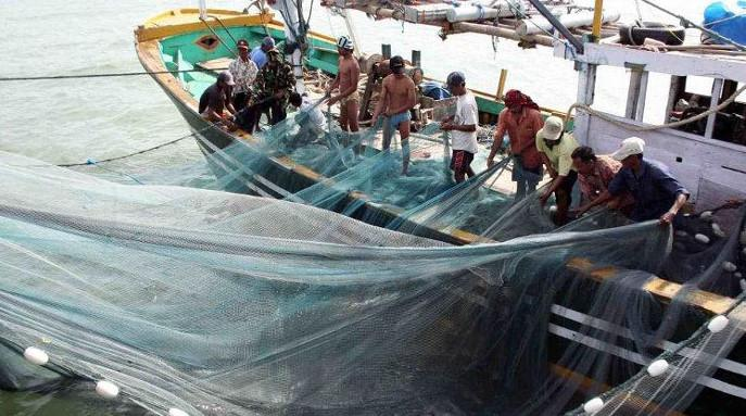 Indonesia reimposes ban on destructive seine and trawl nets in its waters