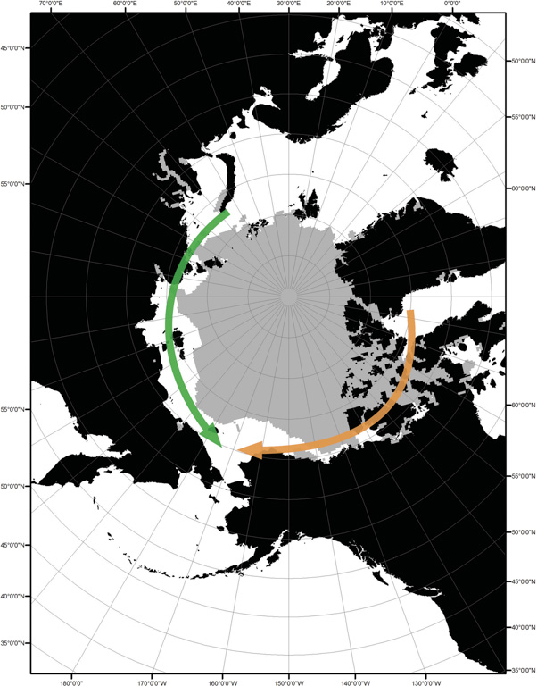 Potential routes for movement of seals infected with PDV through the Arctic Ocean opened by reductions in sea ice extent. Image courtesy of VanWormer et al., 2019.