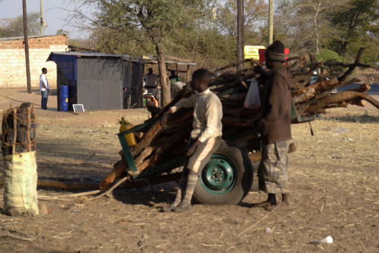 Charcoal and fuel wood from the reserve. Image by Dellane Masiya Mhlanga for Mongabay.