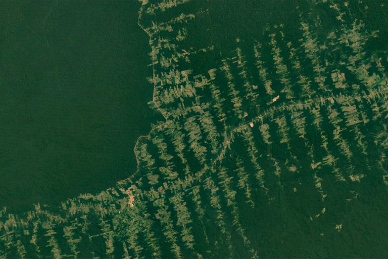 Google Earth image showing deforestation south of Santarém, in the state of Pará.