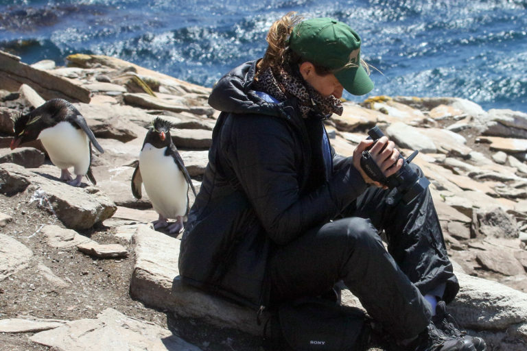 Sue Palminteri with penguins on Saunders Island in the Falkland Islands. Courtesy of George Powell.