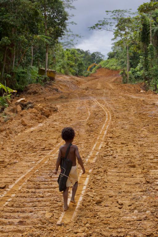 Logging road construction on Manus Island in Papua New Guinea