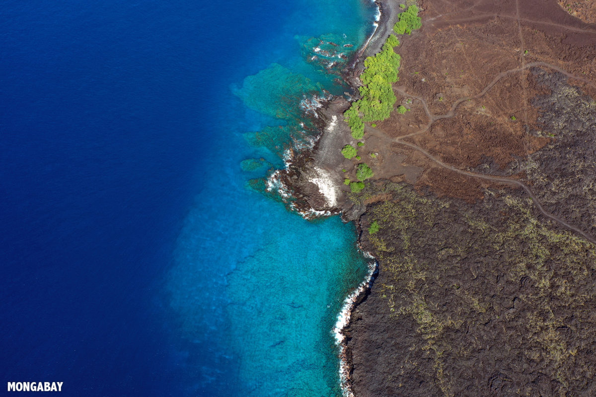 Lava flows off the western coast of the Big Island of Hawaii. Photo by Rhett A. Butler.