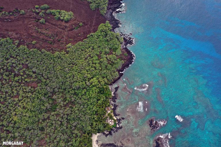 Reef off the western coast of the Big Island of Hawaii. Photo by Rhett A. Butler.