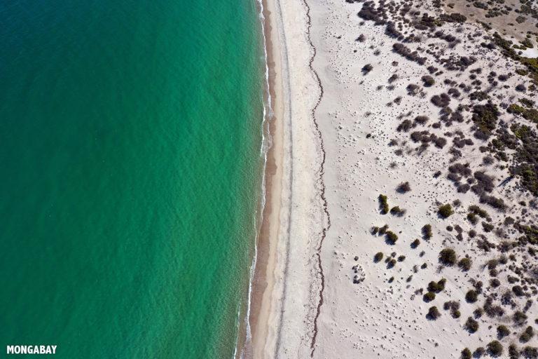 Remote beach in Baja California, Mexico. Photo by Rhett A. Butler.