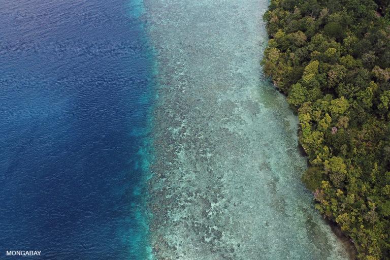 Maratua Island in the Derawan Archipelago off East Kalimantan. Photo by Rhett A. Butler.