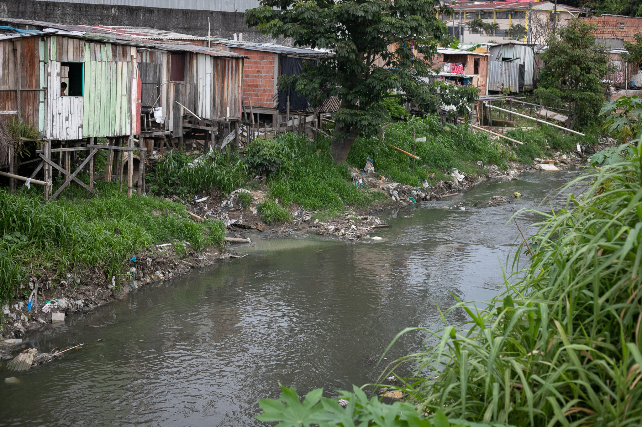 Polluted igarapé in the Raiz neighborhood, in the outskirts of Manaus. Image by César Nogueira.