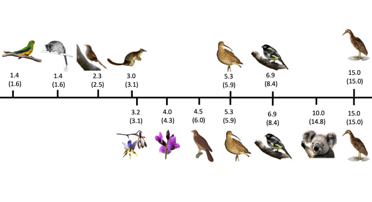 Infographic showing the number of species benefitting from management if the top seven umbrella species are managed from both the priority government list (top) and the optimized list (bottom). The number of species in brackets are those that could be managed without considering the umbrella benefits of any other species. Image by courtesy of Ward et al., 2019.