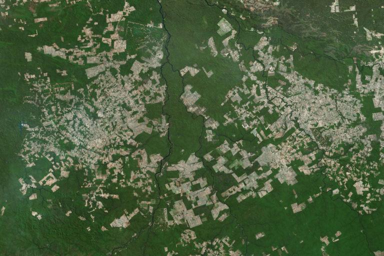 Deforestation in Novo Progresso in the state of Para