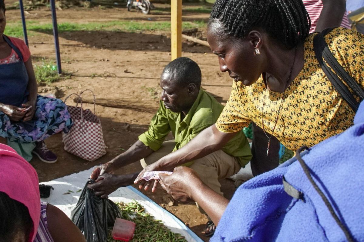 Buying nsenene in Mbarara. Image by Thomas Lewton for Mongabay.