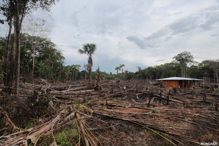 Deforestation in the Colombian Amazon. Photo by Rhett A. Butler for Mongabay.