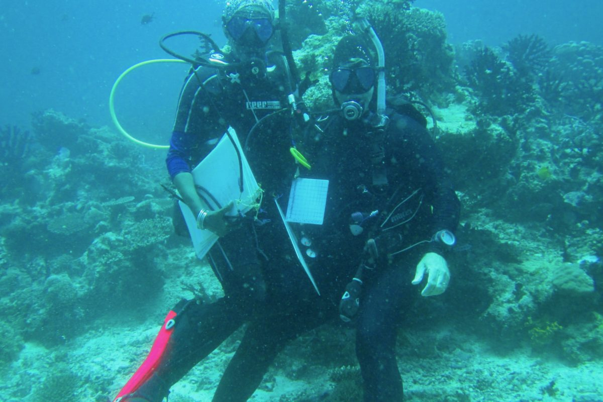 Tim McClanahan and dive partner Nyawira Muthiga surveying coral reef in East Africa. Image courtesy TimMcClanahan.