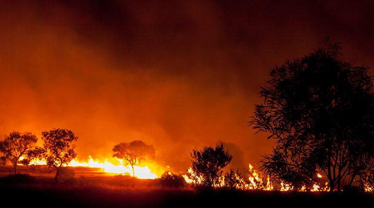 Bushfire in grassland in Australia.