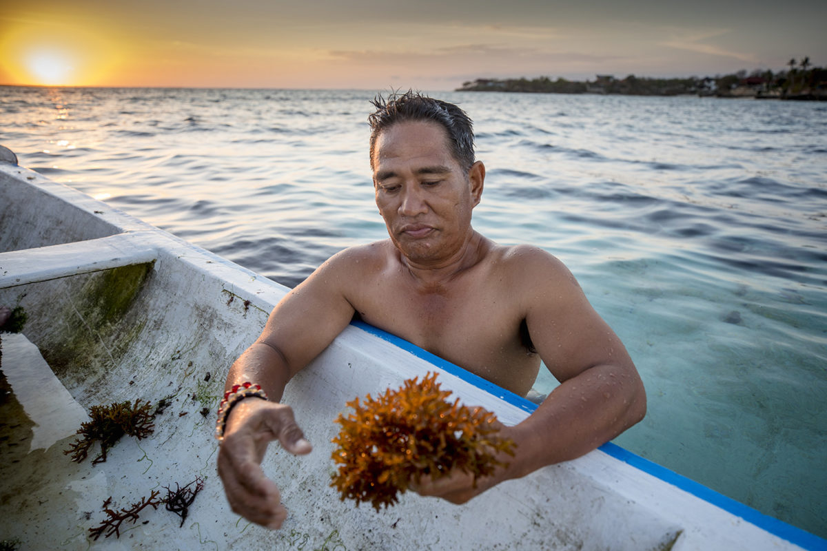 Wayan Suarbawa ute i havet vid algodlingarna