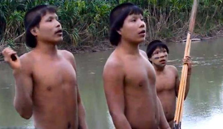 First possible COVID-19 indigenous cases detected near key Amazon reserve