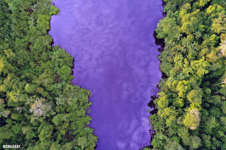 Blackwater lake in the Peruvian Amazon. Photo by Rhett A. Butler for Mongabay.