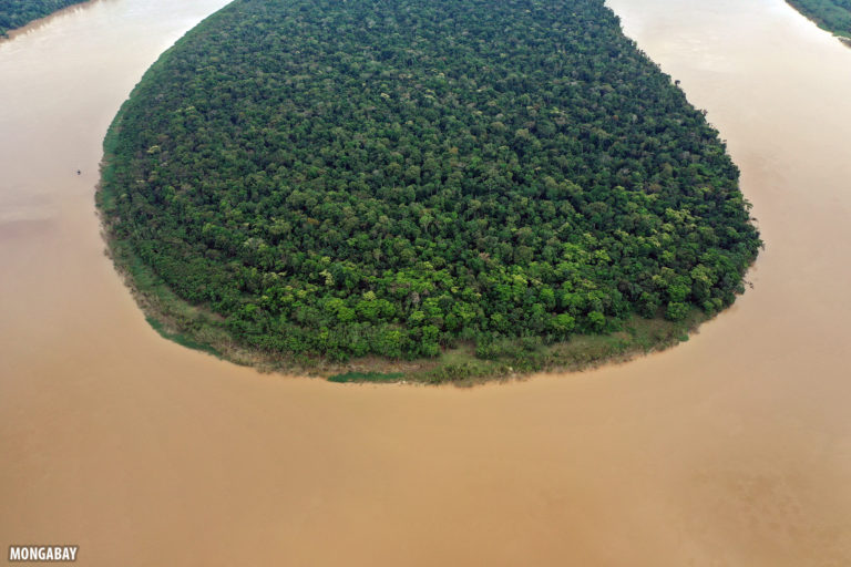 Amazon rainforest in Brazil. Photo by Rhett A. Butler for Mongabay.