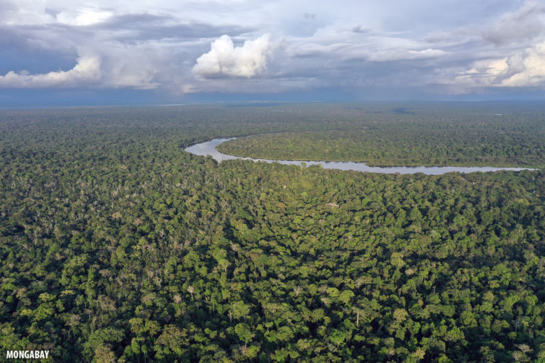 The Amazon rainforest. Photo by Rhett A. Butler for Mongabay.