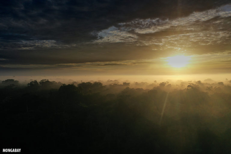 Sunrise over the rainforest in the Peruvian Amazon. Photo by Rhett A. Butler for Mongabay.