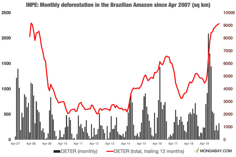 Deforestation has rising to the highest level in more than a decade in the Brazilian Amazon, according to official government data.