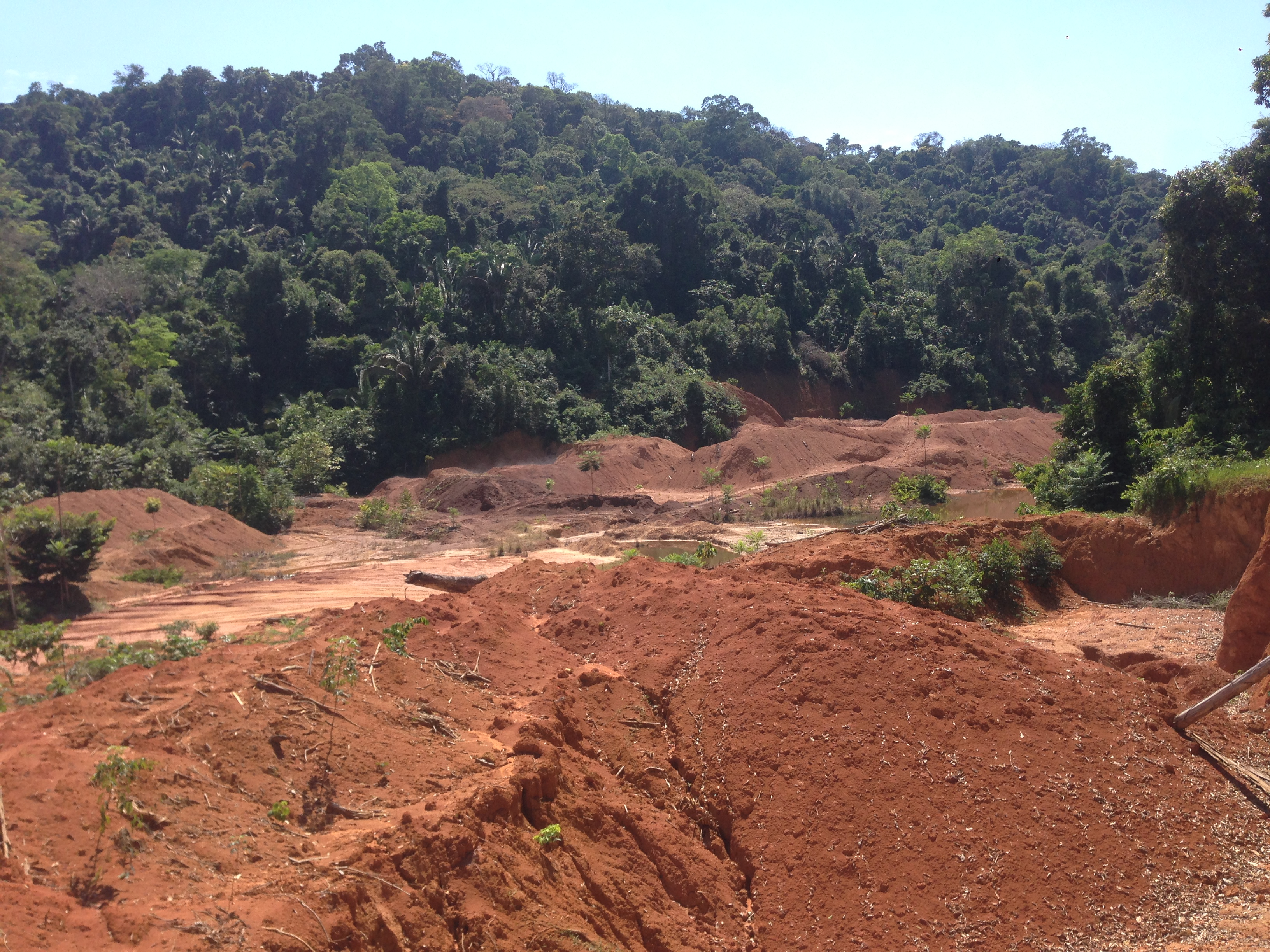 An illegal mining site on Munduruku indigenous land in Pará state, in the Amazon region. Image by Sam Cowie