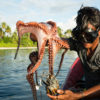 Traditional fisherman catching an octopus in Banggai Regency, Central Sulawesi, Indonesia. Photo © Garth Cripps / Blue Ventures.