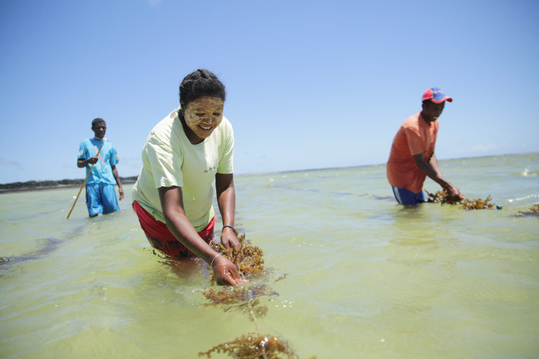 Malagasy villagers working their community aquaculture project in Madagascar. Photo courtesy of Blue Ventures.