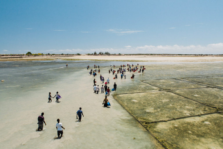 Community aquaculture project in Madagascar. Photo courtesy of Blue Ventures.