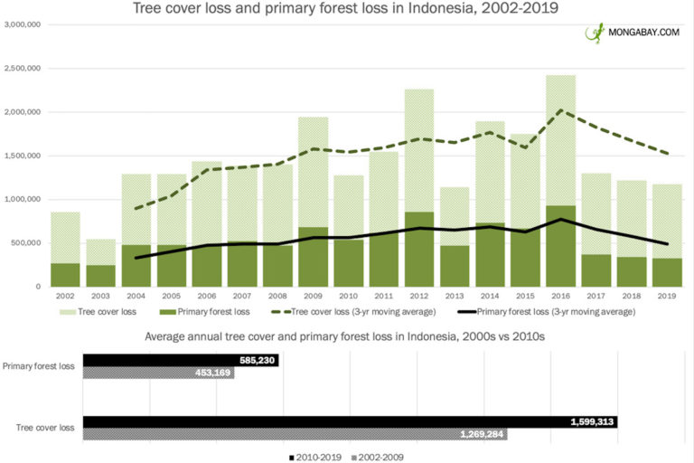 Annual tree cover loss in Indonesia since 2001, according to Hansen / WRI 2020.
