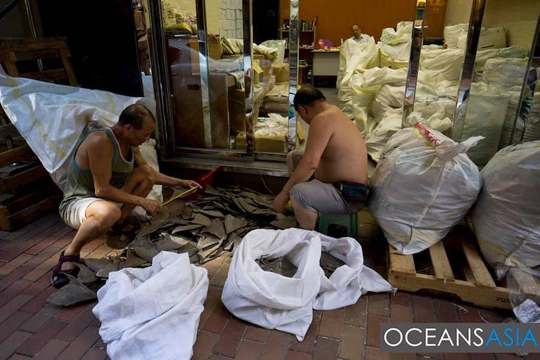 Shark fins being sorted outside a shop in Hong Kong. Image by OceansAsia.