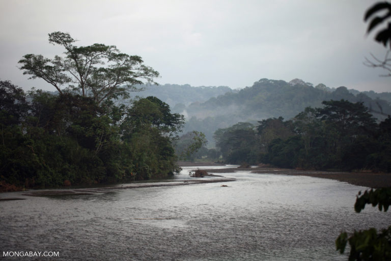 River near Penalosa in Colombia's Choco region. Photo by Rhett A. Butler.
