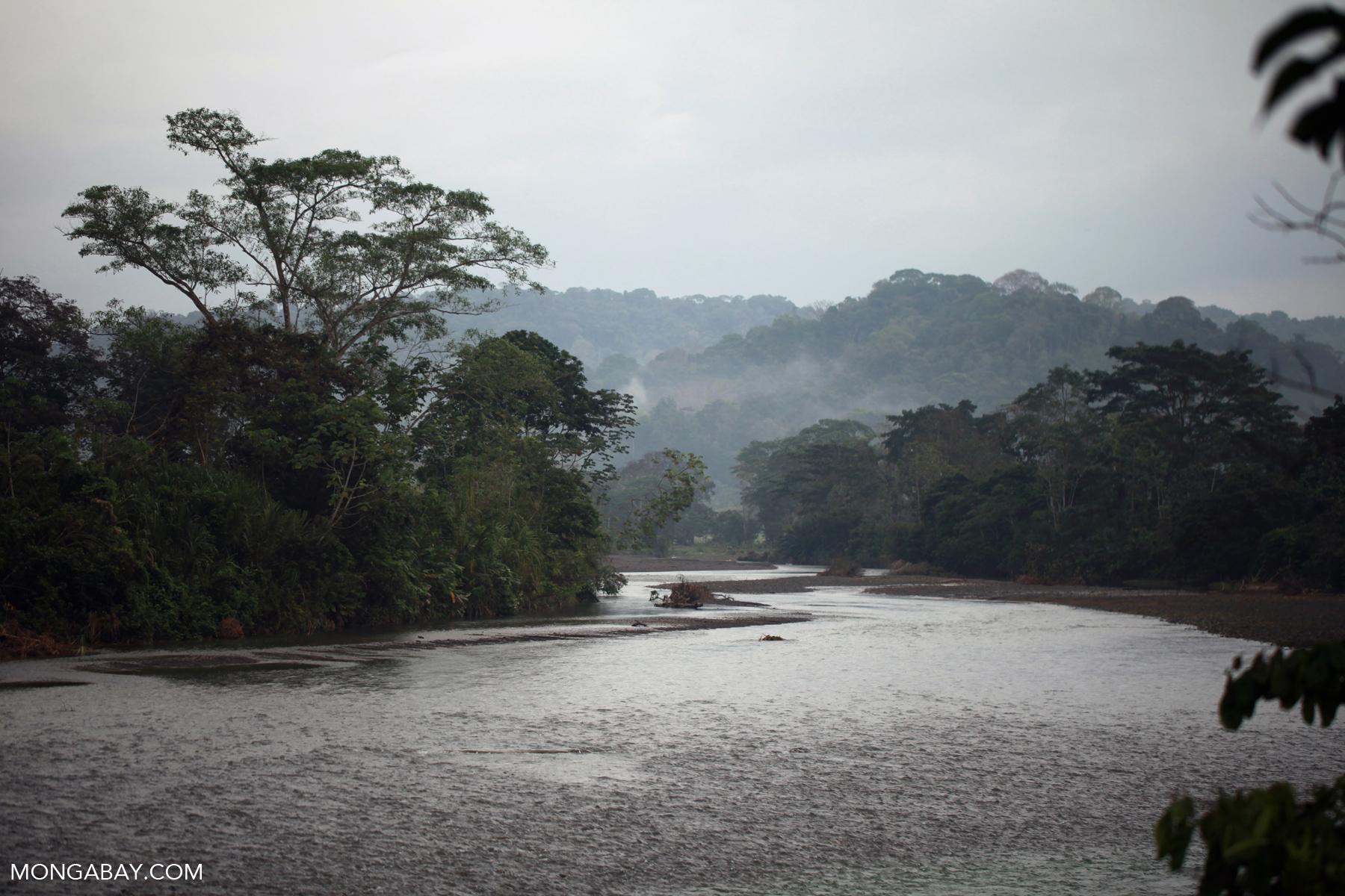 River near Penalosa in Colombia's Choco region. Photo by Rhett A. Butler.