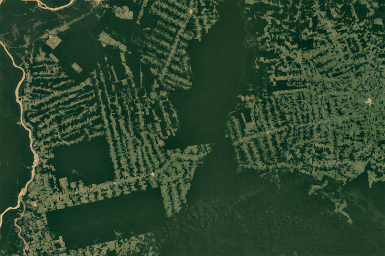 Most deforestation in the Brazilian Amazon is driven by the conversion of forests to pasture and cropland. This satellite photo shows significant forest fragmentation in the state of Rondônia. Image courtesy of NASA.
