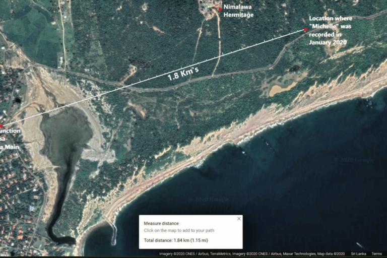 6 Michelles location 1.8 km to populated area in sri lankan news