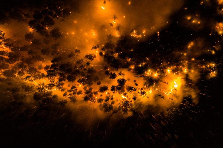 In July 2020, Greenpeace Russia documented forest fires in the Krasnoyarsk region of Siberia.