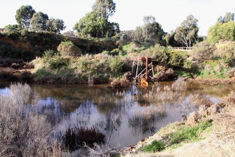 Goldfields in Australia. Image by Lettuce./Flickr.