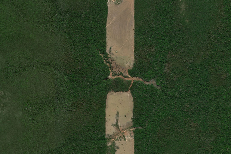 Deforestation in the state of Rondônia, Brazil. Courtesy of Maxar Technologies.