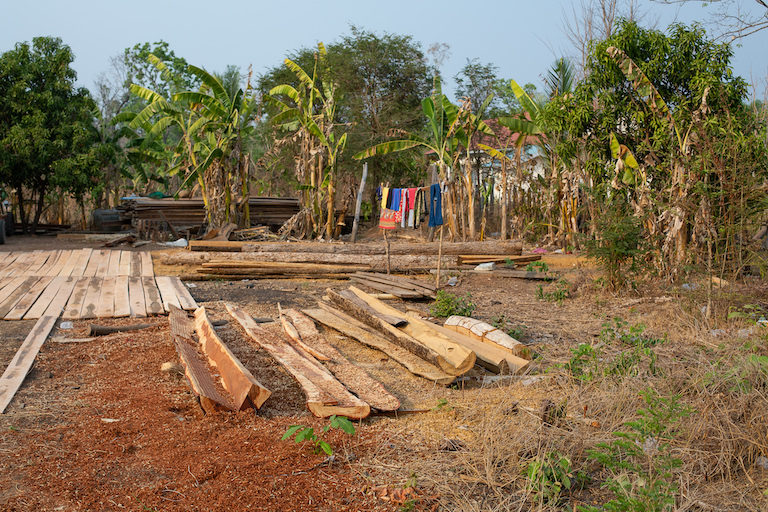 A pile of processed wood lying in a villager's garden. Photo by Chris Humphrey for Mongabay.