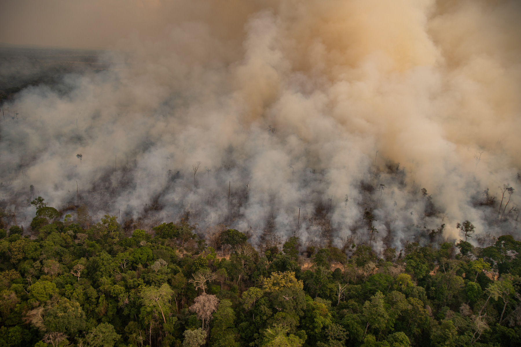 Fire in an area newly deforested registered by Deter (Real Time Deforestation Detection System), in Porto Velho, Rondônia state. Taken 16 Aug, 2020. CREDIT: © Christian Braga / Greenpeace