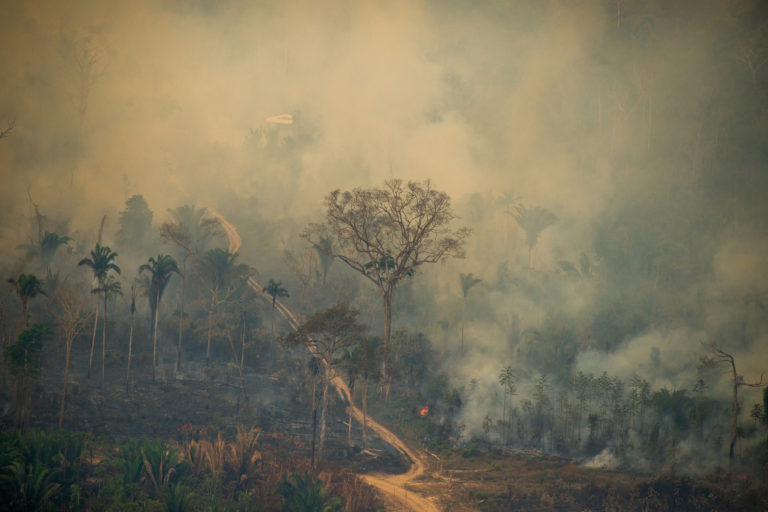 Fire in the Jaci-Paraná Extractive Reserve, in Porto Velho, Rondônia state. Taken 16 Aug, 2020. CREDIT: © Christian Braga / Greenpeace